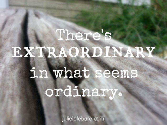 extraordinary-in-the-ordinary-e1409751777802